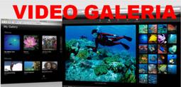 VIDEOS Colombia Ecoturismo