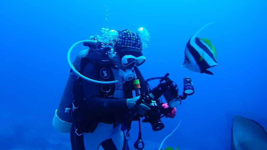 crucero buceo vacaciones diving-compressed