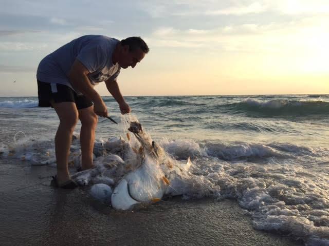 colombia-ecoturismo-rescata-un-tiburon-en-miami-2