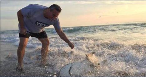 jorge-murillo-rescatando-tiburona